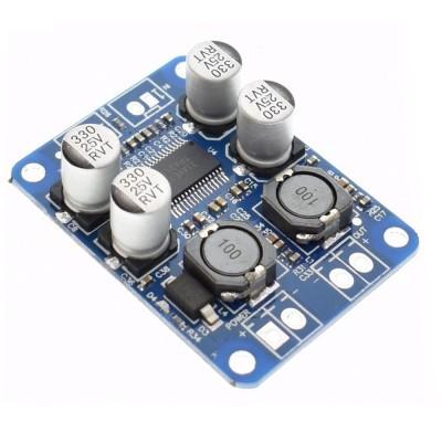 TPA3118 60W Mono Digital Audio Amplifier Module