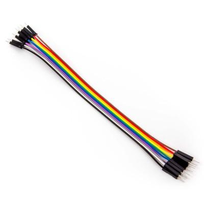 20cm 10 Pin Erkek Erkek Dupont Kablo