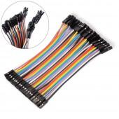 10cm 40 Pin Dişi Erkek Dupont Kablo