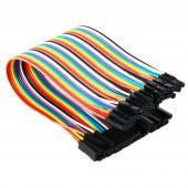 10 Pin Dişi Dişi Dupont Kablo